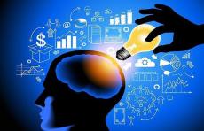 作为高利润轻投资的全脑开发项目的发展商机
