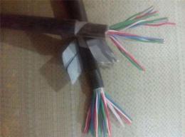 PTYA22信号电缆14芯价格