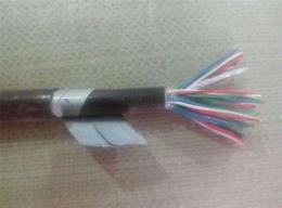 PTYLH23信号电缆21芯价格