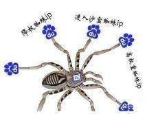 什么是百度蜘蛛