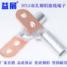 國標雙孔銅鋁過渡線鼻DTL2-50銅鋁堵油型接