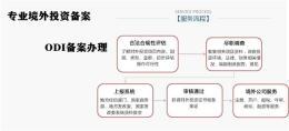 深圳龙岗境外投资备案流程详解