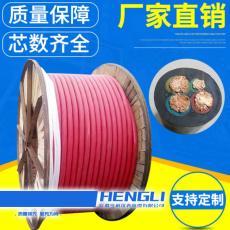 R类导体0.5mm2截面DJGGPR22硅橡胶电缆