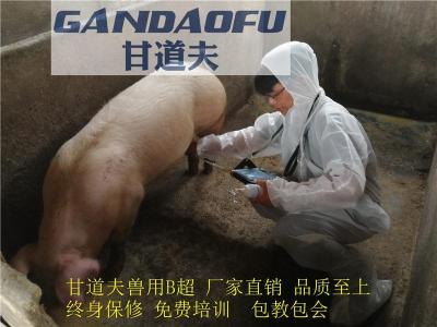 618猪牛羊动物B超厂家新报价优惠价格多少钱