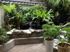 常州盆栽植物出租 室内绿植租摆销售