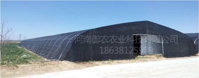 河南御农供应全新料聚乙烯遮阳网
