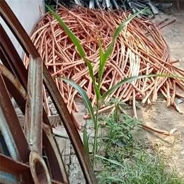今天静海回收电缆一米电缆价格