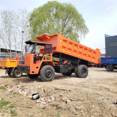 濱州10噸履帶工程車手推式小型