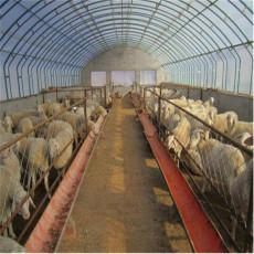 厂家生产单体连栋温室大棚温室大棚骨架农业
