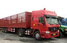 中山运电动车到九龙坡区物流公司