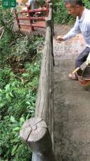 海沧职业仿木栏杆施工团队批发