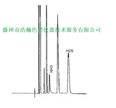 酸性气体中氨和硫化氢组分测定气相色谱仪