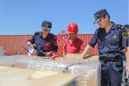 浙江进口漂白纸浆一般贸易清关