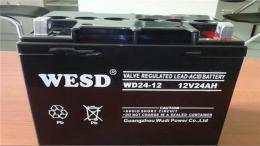 无敌蓄电池WD5-12 12V5AH性能及参数