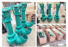 NL80-25立式污水泥浆泵