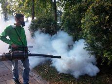 專業除四害白蟻防治 進口藥劑安全無毒