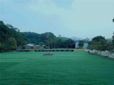 廣州天河區周邊游部門聚會野炊游玩的地方
