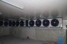 50平方米速冻冷库设计安装成本