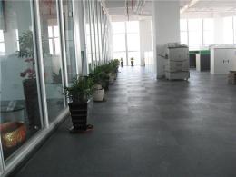 广东深圳市LG写字楼耐污地胶板