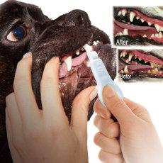 新型宠物用品 狗用洁牙擦 牙齿清洁护理 宠