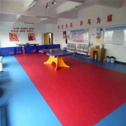 乒乓球室地板 运动塑胶地板