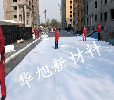 HSY-111塑料排水板-虹吸排水板厂家
