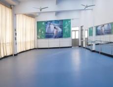 舞蹈房弹性塑胶地板