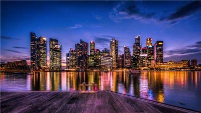 新加坡极致国际拍卖公司总接收点