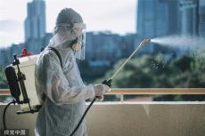 上海灭白蚁公司 灭白蚁 奔奔灭白蚁公司
