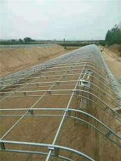 潞城包塑养猪组装钢管大棚厂家