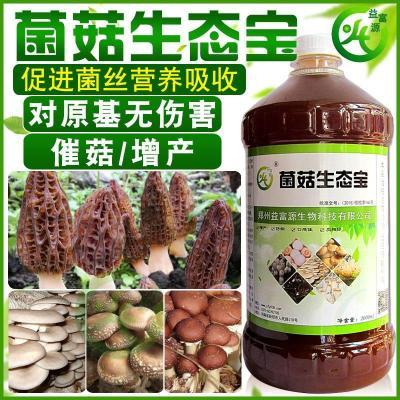 羊肚菌营养液增产快永胜有机em菌菇生态宝