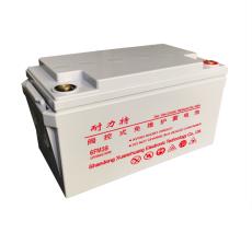 耐力特蓄電池12V55AH儲能現貨電池