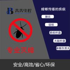 上海专业除灭蟑螂上门服务奔奔虫控