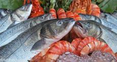 巴沙鱼进口清关的详细流程/进口代理清关公