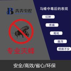 上海专业上门除灭马蜂服务杀虫公司