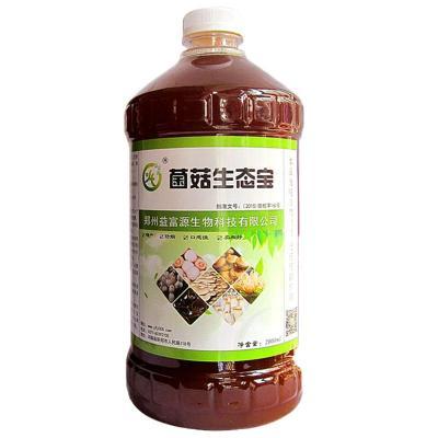 羊肚菌种植方法和条件益富源分享菌菇催菇增