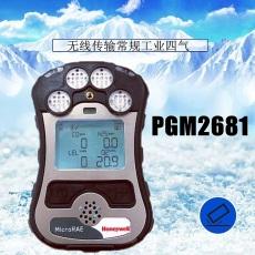 华瑞RAE无线有害气体检测仪MicroRAE代理商