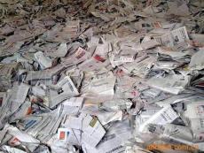 上海废纸板回收市场价格