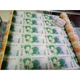 塑料龙钞的价格是多少 有什么升值空间