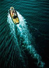 澳大利亚夏威夷果进口清关国内需要资料