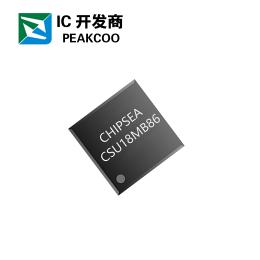深圳鼎盛合科技提供电子脂肪秤芯片CS18MB86
