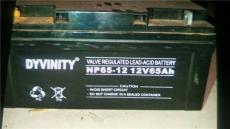 DYVINITY蓄電池儲能UPS消防膠體電池供貨