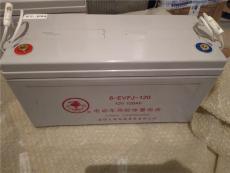 火炬蓄電池儲能EPS消防電源廠商穩壓應急供