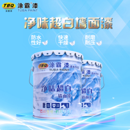 凈味超白環保墻面漆涂霸漆廠家生產