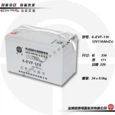 明泰蓄電池6-EVF-110電轎車電池12V-110AH