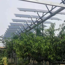 晶天太陽能光伏板300W72片林光互補光伏組件