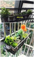 園藝不銹鋼花架  窗外不銹鋼花架