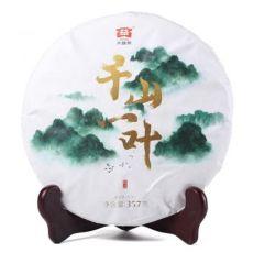 2019年大益千山一叶普洱茶行情-茶有益茶业