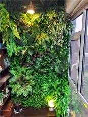 天河区办公室园区室外墙体绿化 立体墙出售