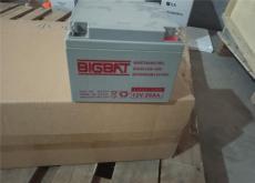 BIGBAT蓄電池12V24AH型號儲能電池經銷